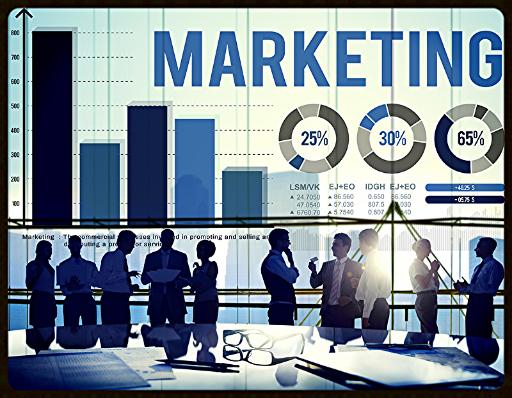 Personalberatung in den Funktionsbereichen Vertrieb und Marketing