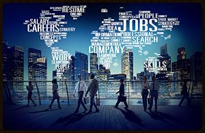 Baumeister Personalberatung - Stellenangebote